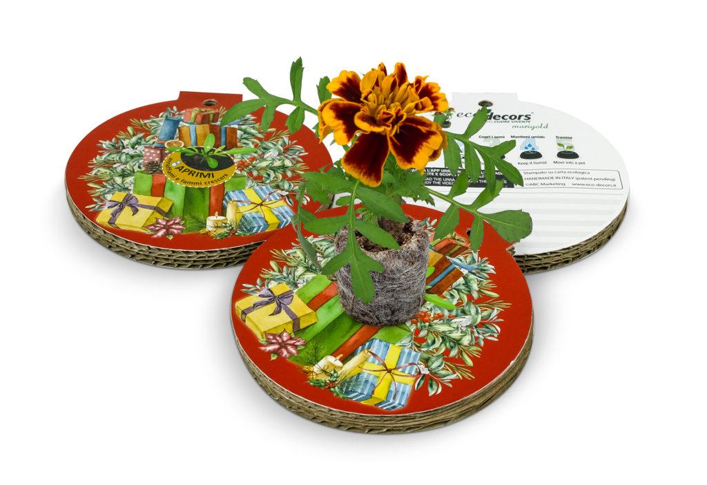 Palline natalizie ecologiche eco-decors da cui nasce una pianta di marigold