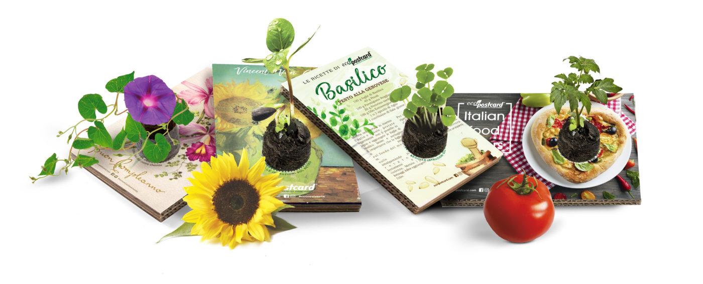Eco-Postcard la cartolina ecologica con il cuore vivente