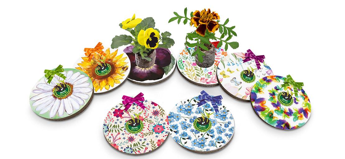 Decorazioni e chiudipacco da cui nascono piante di calendula, girasole, margherita, nontiscordardime, viola del pensiero.